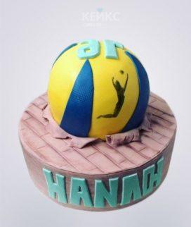 Торт волейбол в виде мяча Фото