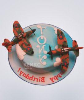 Торт Военный самолет 1 Фото