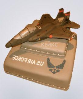 Торт Военный самолет 10 Фото