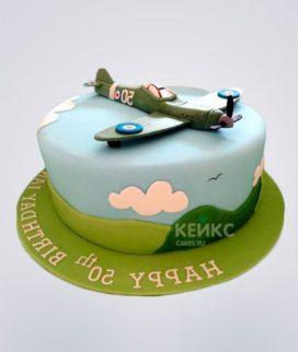 Торт Военный самолет 2 Фото