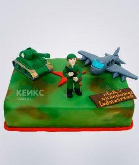 Торт Военный самолет Фото