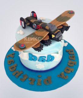 Торт Военный самолет 3 Фото