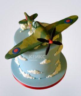 Торт Военный самолет 4 Фото