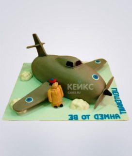 Торт Военный самолет 5 Фото
