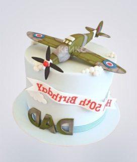Торт Военный самолет 7 Фото