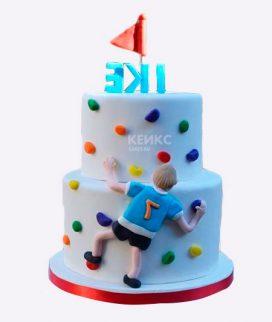Торт для альпиниста-12 Фото