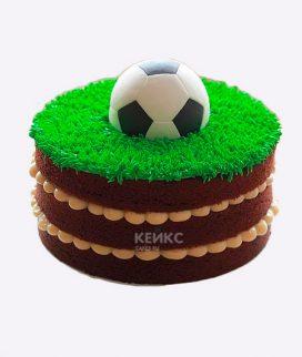 Торт футбол без мастики 1 Фото