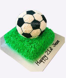 Торт футбол без мастики 16 Фото