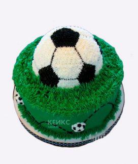 Торт футбол без мастики 8 Фото
