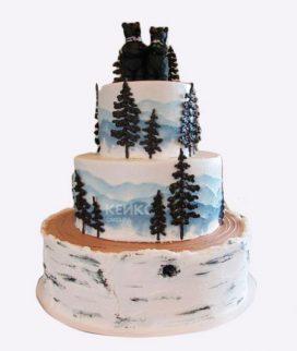 Торт гора-6 Фото